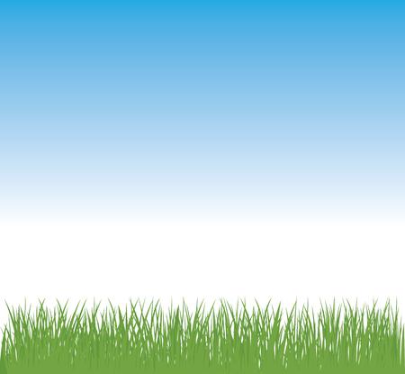 Landscape green grass and blue sky stock vector illustration 일러스트