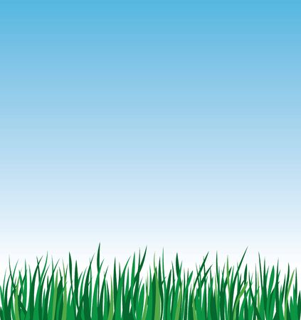 Green grass on a background of blue sky vector stock illustration