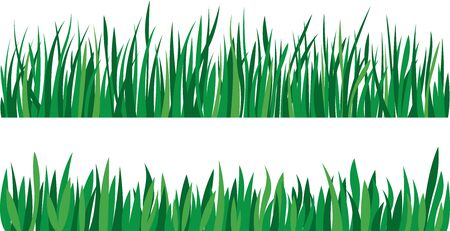 Stock vector illustration Set of green grass isolated on white background