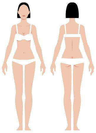 Corps féminin dans les paramètres de mesure de pleine longueur pour l'illustration vectorielle de vêtements