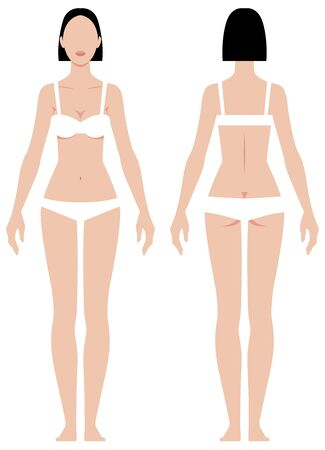 Female body in full length measurement parameters for clothes vector illustration