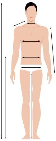 Pattern of the male body measurements in full length. Template for measuring body proportions