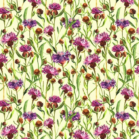 Watercolor painted purple wild thistle flowers on a yellow background. Blossom meadow plant. Hand drawn botanical illustration. Seamless pattern.