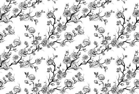 Hand drawn graphic floral pattern with roses and leaf. Black and white wallpaper Stock fotó