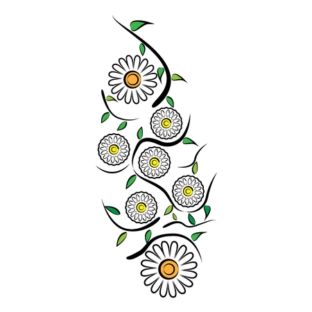 Vector illustration of a pattern of chamomile flowers, leaves and meandering stems on a white background Illustration
