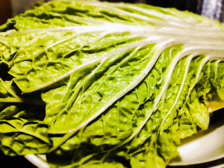 closeup photo of green leaf of Peking cabbage with white veins with blur effect at the edges of the photo. Stok Fotoğraf