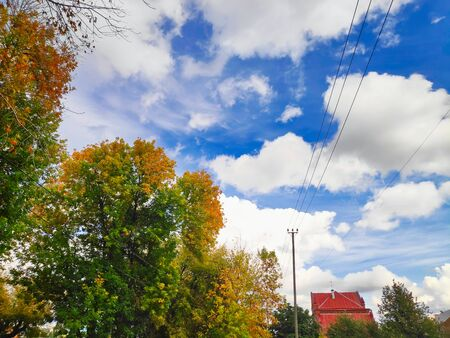 landscape photography autumn trees with green and yellow leaves, a house with a red roof, a pole with wires on a background of blue sky with cumulus clouds.