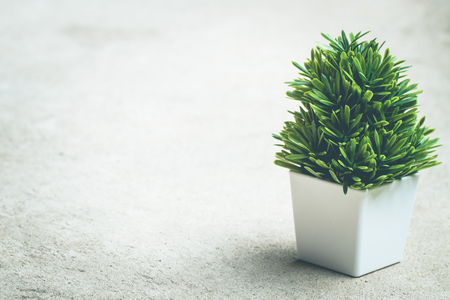 Small artificial tree on ground vintage background. copy space Standard-Bild