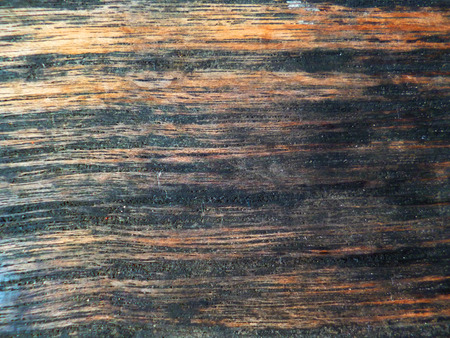 floorboard: wood texture for background