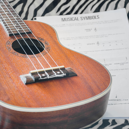 acoustic ukulele: ukulele hawaii acoustic guitar
