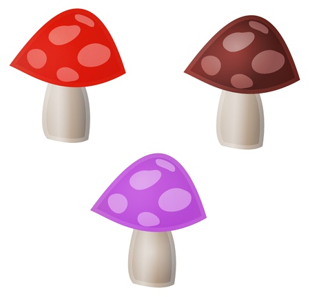 Illustration of three mushrooms with different colors Stock Vector - 17727825