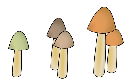 Illustration of five mushrooms with different colors and small cap Stock Vector - 17727813