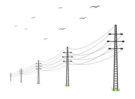 高圧送電線と白い背景の上の鳥