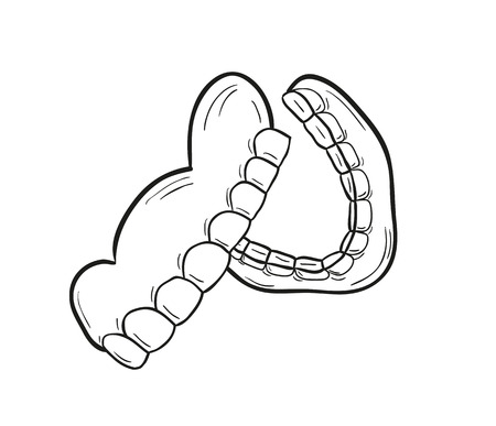 sketch of the denture on white background, isolated Vector