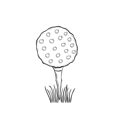 sketch of the golf ball on white background, isolated Vector