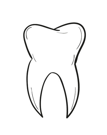 sketch of the tooth on white background, isolated Vector