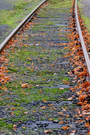 Railway in the autumn with leaves, photo photo