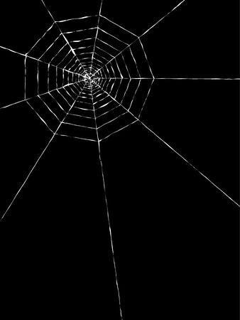 vector of the spider web on black background