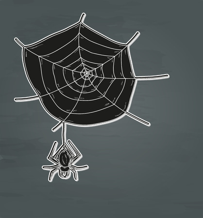 spider web and spider on dark background