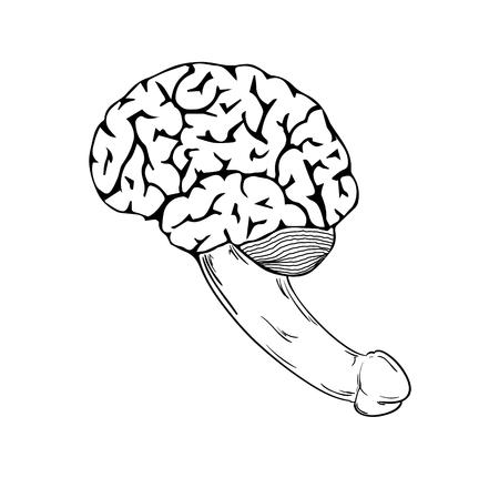 idiot: human brain with penis on white background, isolated, sketch