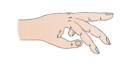 ring finger: human hand with pointing ring finger, cartoon, isolated