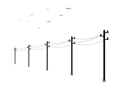 powerline: high voltage power lines and birds on white background