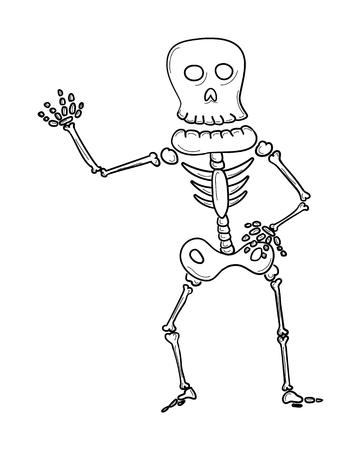 clavicle: sketch of the skeleton on white background, isolated