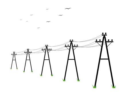 Hochspannungsleitungen und Vögel auf weißem Hintergrund Standard-Bild - 41702185
