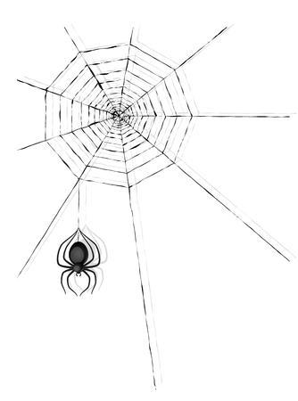 cobweb: spider and spider cobweb on white background Illustration