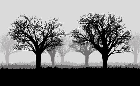 mist: forest in the dark mist with silhouettes of the trees