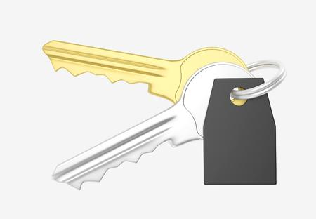 knickknack: Gold and silver key and black trinket with silver ring for locking lock and keep your private in safe. 3D illustration