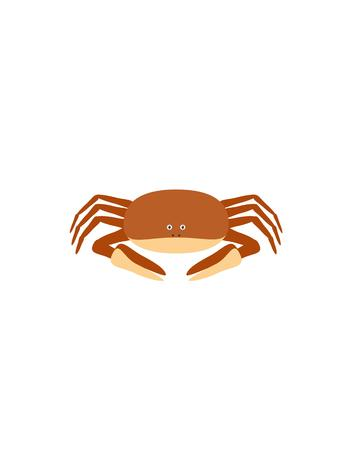 Crab illustration as a funny character. Small aquatic anima with claws living in ocean. Small cartoon creature, isolated object in flat design on white background.