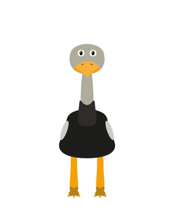 flightless: Ostrich illustration as a funny animal character. Wild flightless bird. Small cartoon creature, isolated object in flat design on white background.