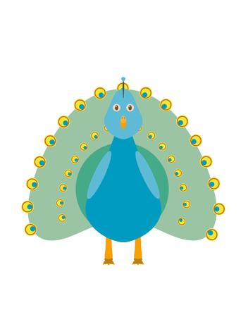 extravagant: Peacock illustration as a funny character. Bird with extravagant eye-spotted tail. Small cartoon creature, isolated object in flat design on white background. Illustration