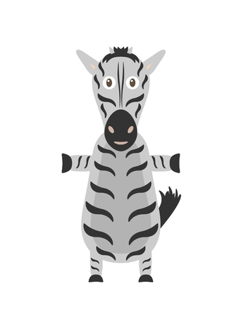 zebra skin: Zebra illustration as a funny character. Wild animal with black and white skin. Small cartoon creature, isolated object in flat design on white background.