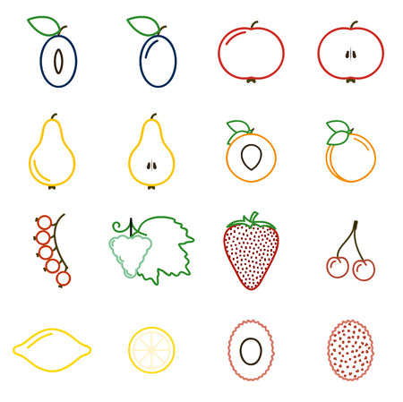 Fruit - collection of icons. Simple linear icons.