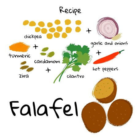 Vector illustration food Falafel and ingredients on a white background