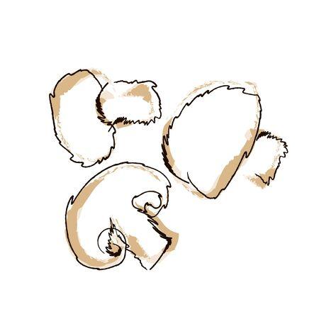 Vektor-Illustration ein Pilz-Champignon-Hand-Draw-Stil isoliert auf weiß