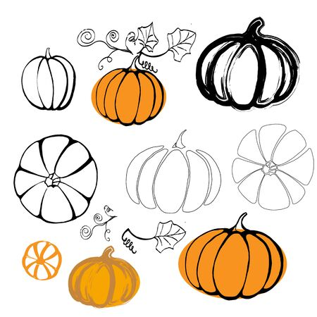 Vector illustration pumpkin isolated on white background Vektorgrafik