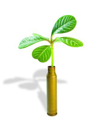 humanisme: Plantes et puces.