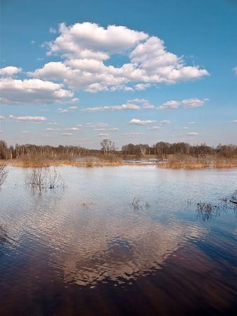 Spring landscape with a flood