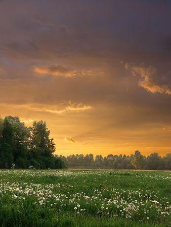 Evening Landscape photo
