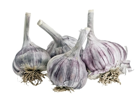 Garlic is isolated on a white background. Stock Photo - 9825313