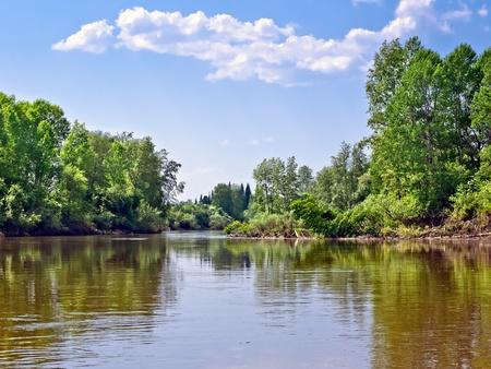 jezior: Summer krajobrazu
