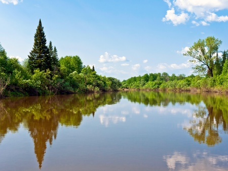 Landscape and nature in Siberia in the summer