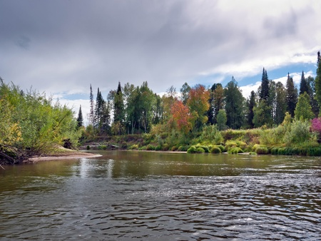 bad weather: Autumn landscape with nature in Siberia