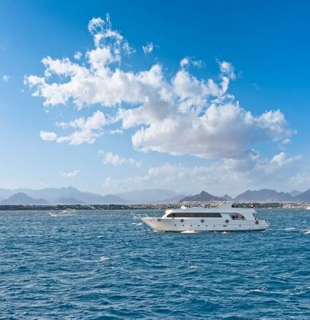 Red Sea. Stock Photo - 11919383