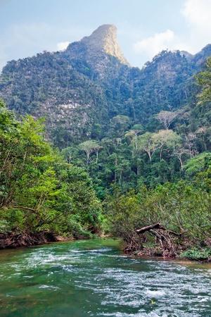Tropical Landscape photo