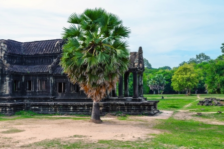 The ruins of Angkor Wat Temple in Cambodia photo