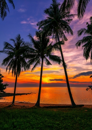 Tropical beach at sunset photo